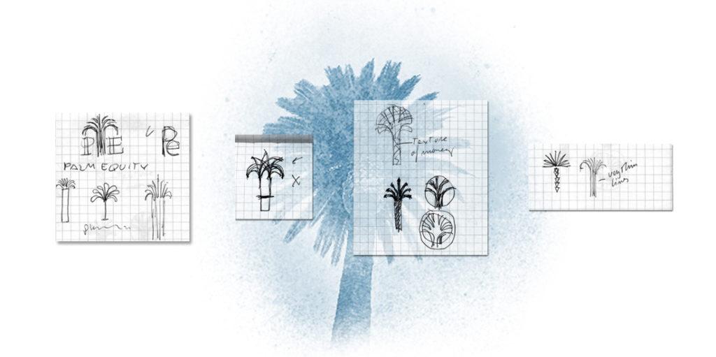 Palm Equity logo exploration