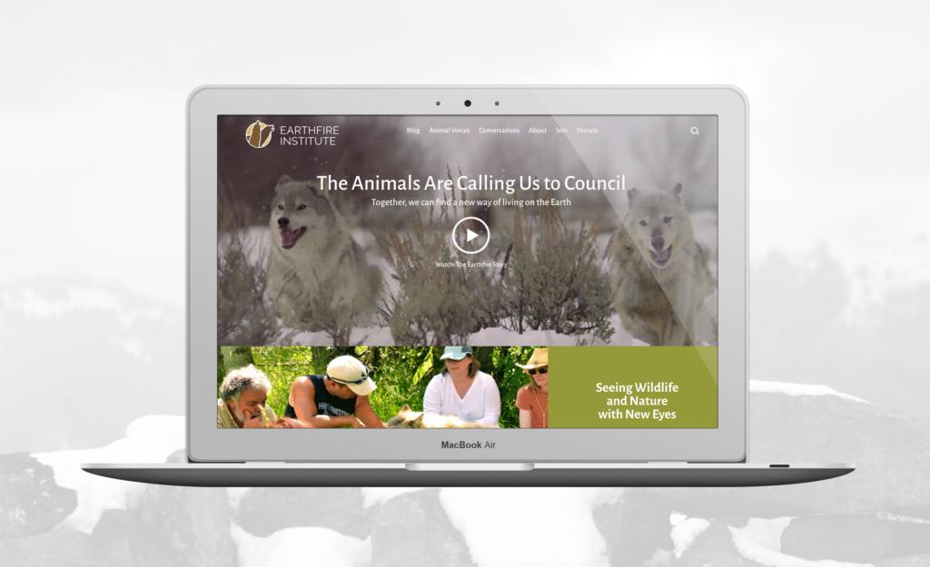 Earthfire Institute website design