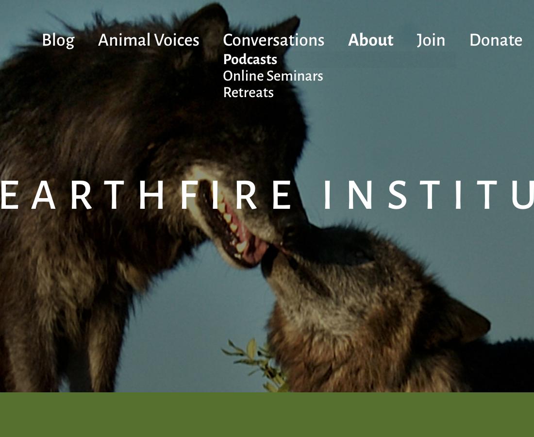 Earthfire Institute