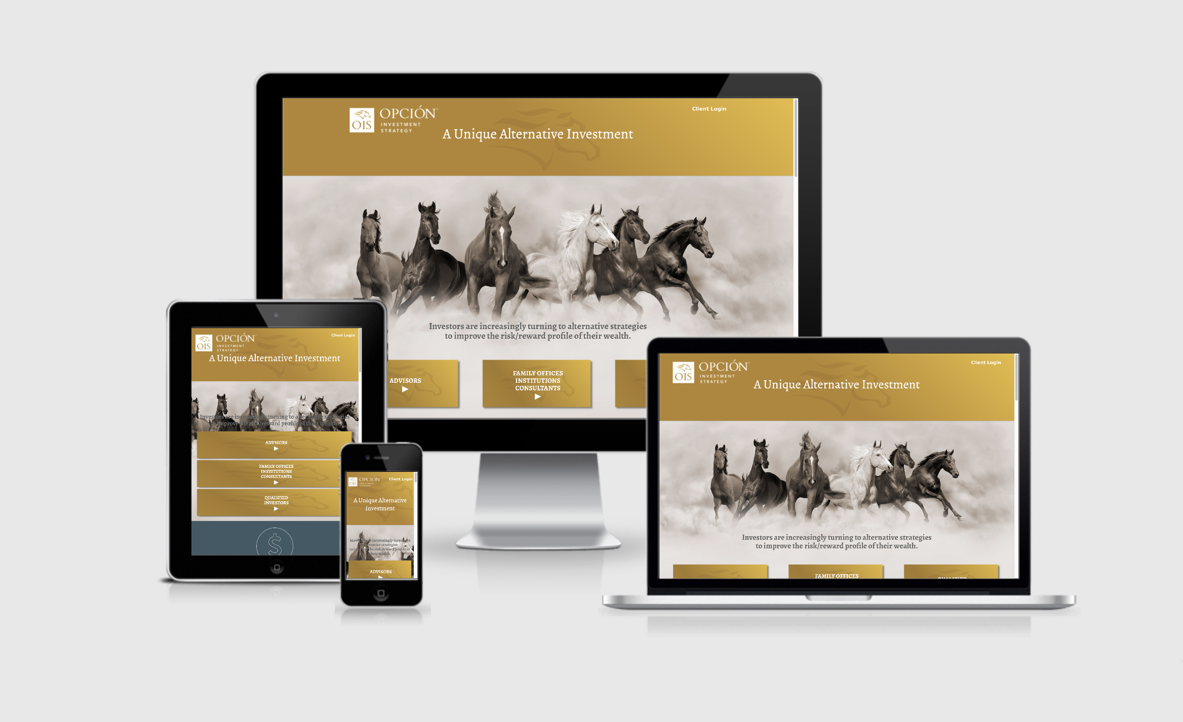 Opción Investment Strategy branded website design and development