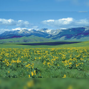 The Country - Ford Creek Outfitters - Montana