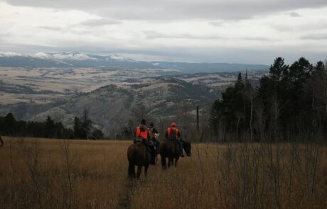 photo-of-horse-back-riding-in-the-mountains-jared-burke-foundation