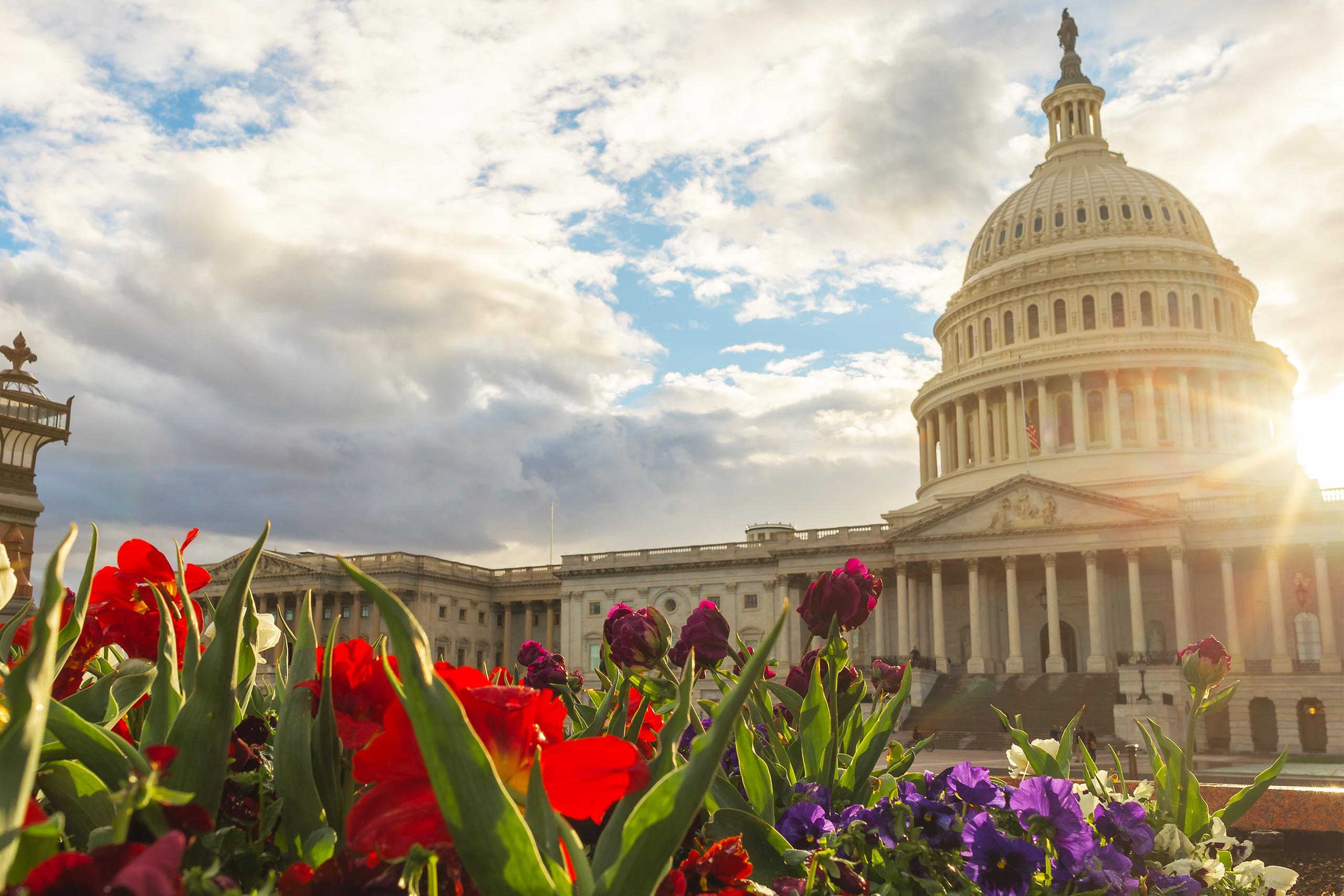 DIA in Washington DC
