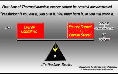 Establish Your Caloric Needs