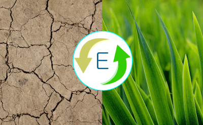 Water Scarcity Ecovie Solution