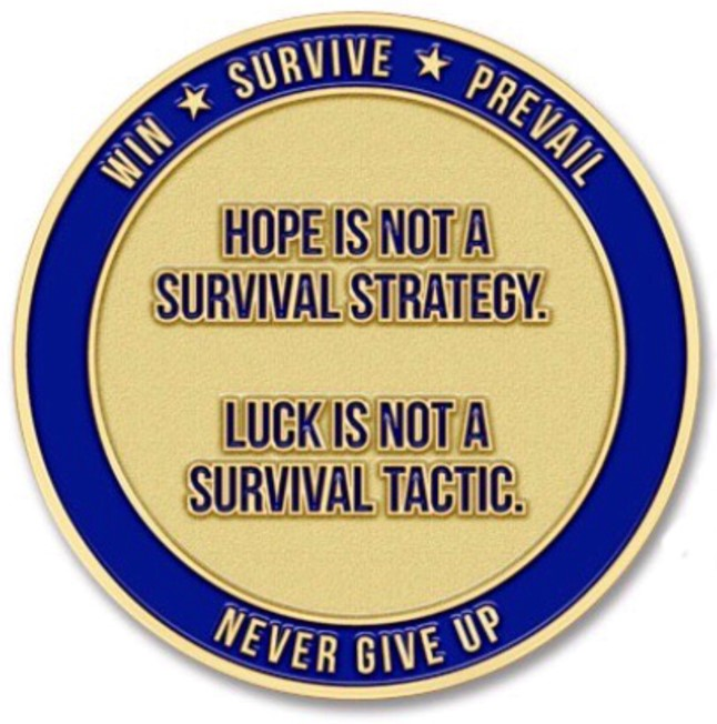 This image has an empty alt attribute; its file name is Hope-is-Not-Logo.jpg