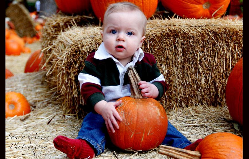 charlie_pumpkin_site