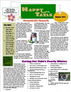 2016 Spring-Summer Newsletter