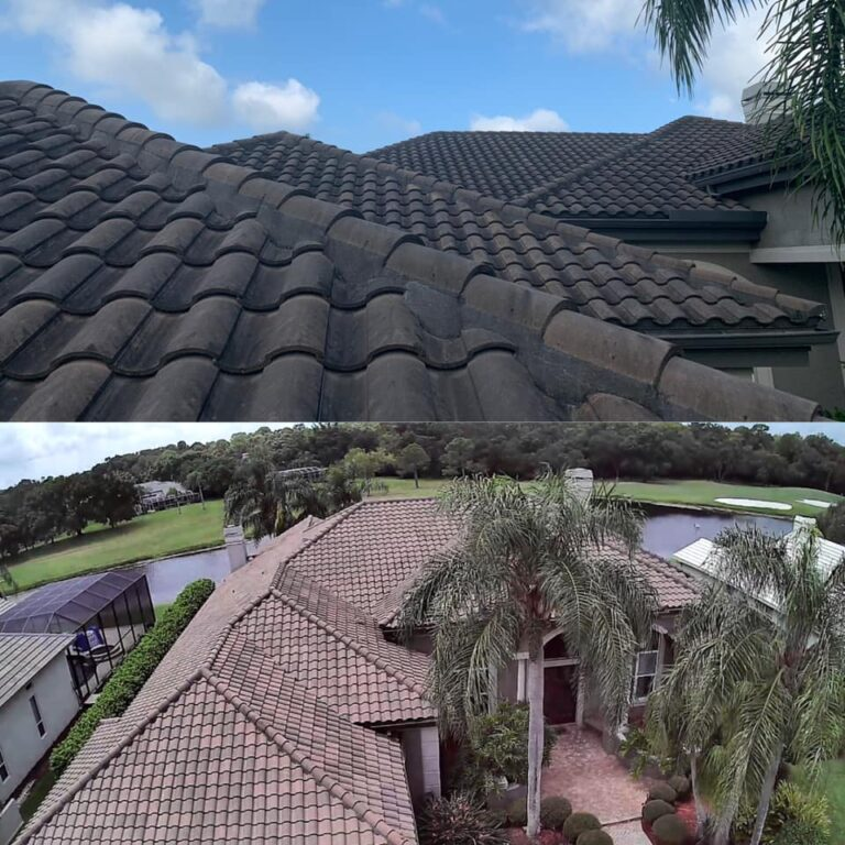 top rated pressure washing services in tampa, pasco, st. pete | Roof cleaning and house washing