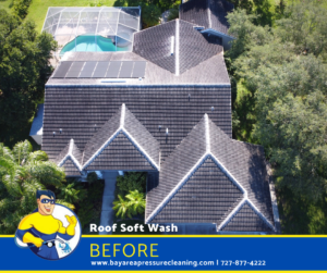 Top rated roof cleaning and pressure washing services in Tampa, Hernando, Clearwater, St. Pete