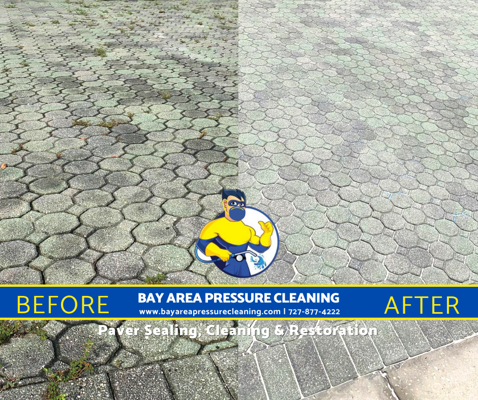 top rated pressure washing and paver sealing tampa and pasco fl