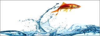 Notes from RSA SF 2019: No Longer Feeling Like an OT Fish in IT Water