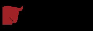 pansini group logo