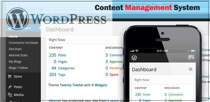 Wicks Web Solutions uses WordPress Content Management System for administration of websites.