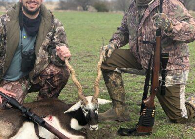 Blackbuck Antelope Hunt
