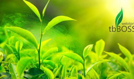 Tea Brokering Back Office System Shift (tbBOSS)
