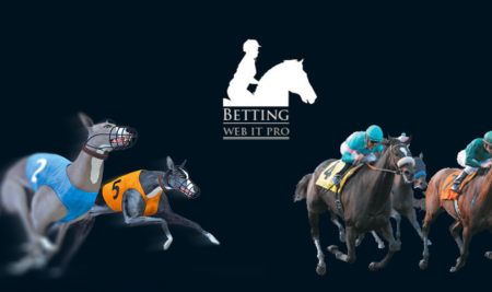 E – Betting / Book Making Solution