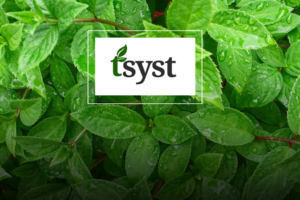 tsyst