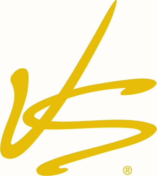 Vision Source Logo