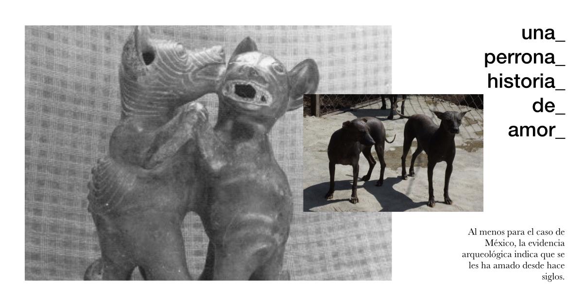 los perros en México prehispánico