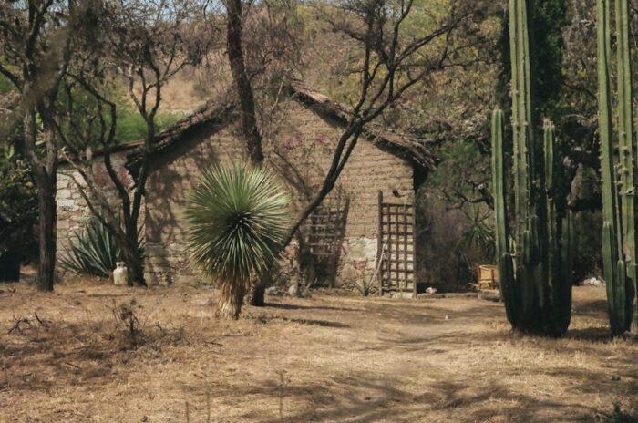 Cañada de la Virgen carne orgánica hospedaje