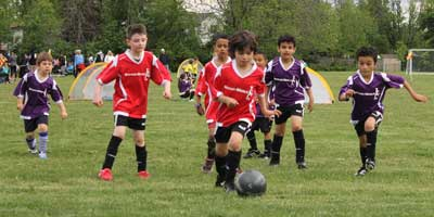 hamilton soccer u8 league