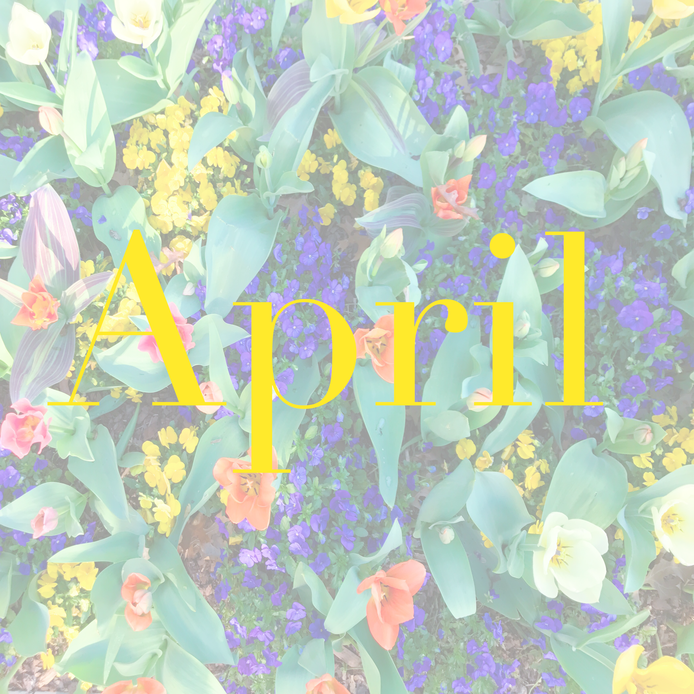 Month by Month~ April