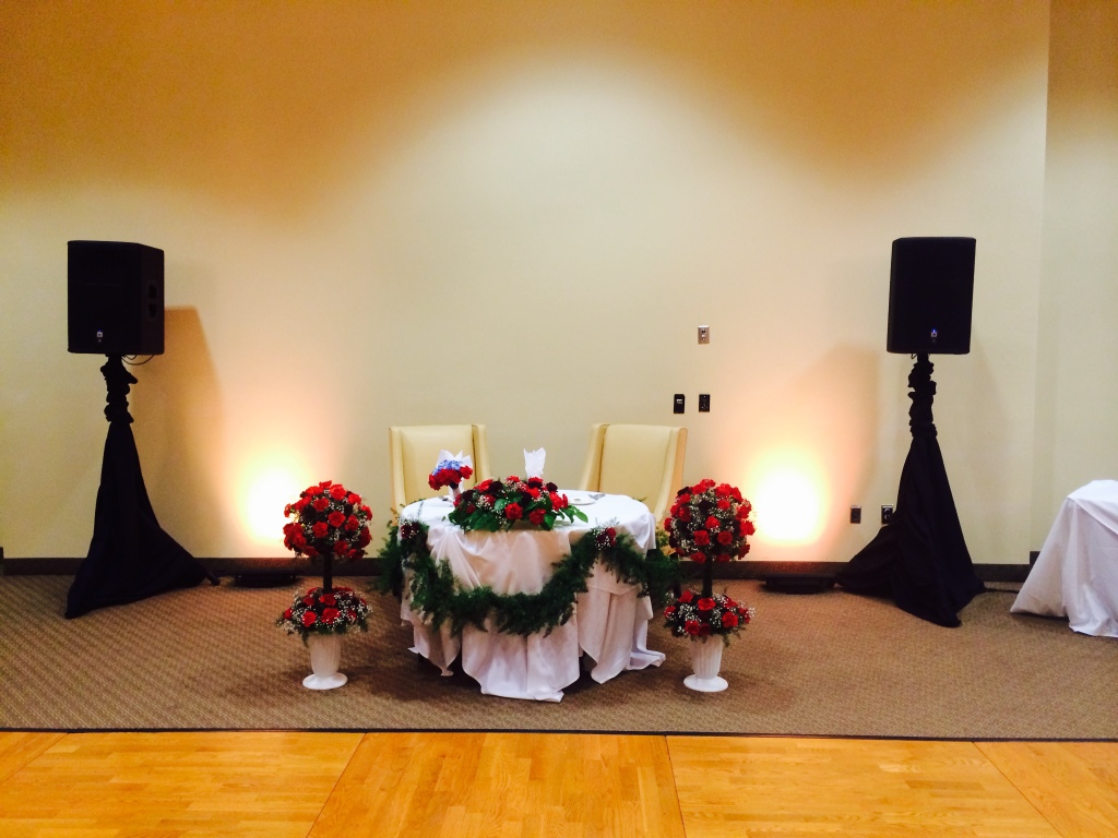 MYDJs Pacific Views Speaker Setup
