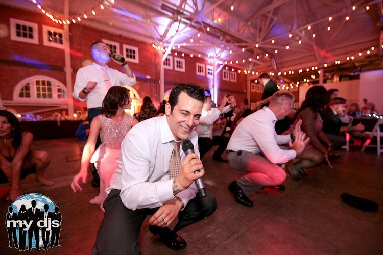 fun-wedding-dj