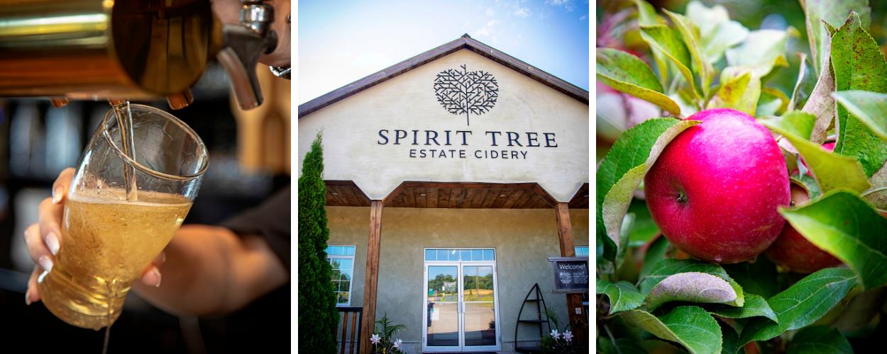 A collage of Spirit Tree photos