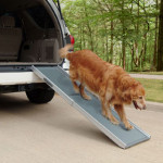 Solvit Deluxe Telescoping Pet Ramp- The Pack Mom Review and Giveaway