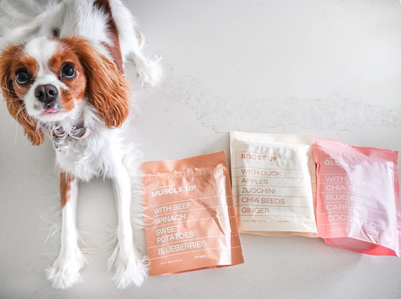 Maxbone Freeze-Dried Food Review!