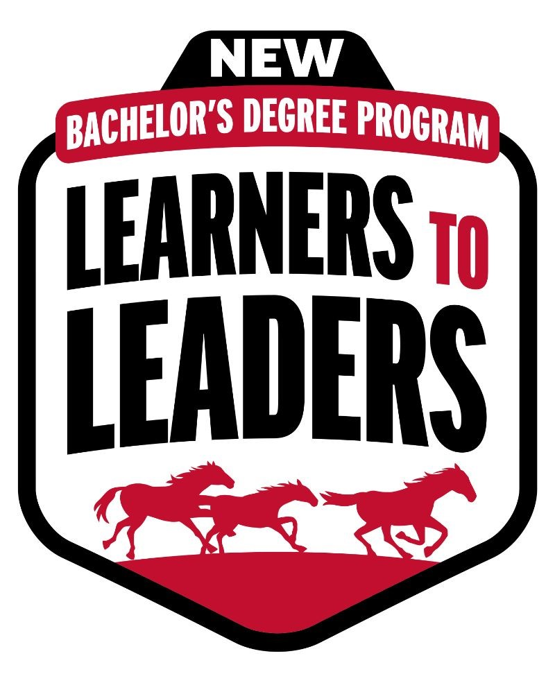 Learners to Leader's logo