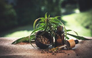 Why Bioactive Terpenes Will Soon Share Headlines with CBD and Other Cannabinoids