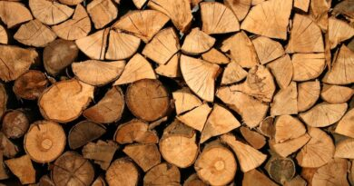 Softwood Lumber Board, USDA Collaborate for Climate Solutions