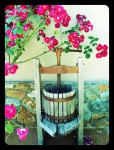 WinePressFlowers