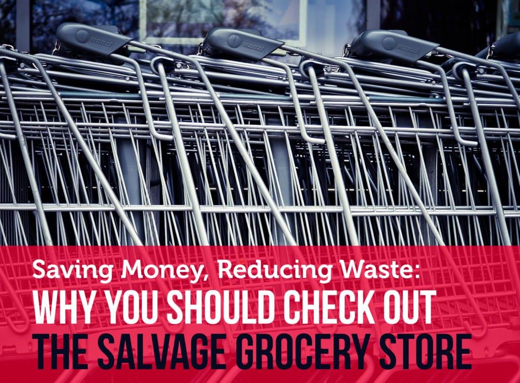 salvage-food-health-concerns