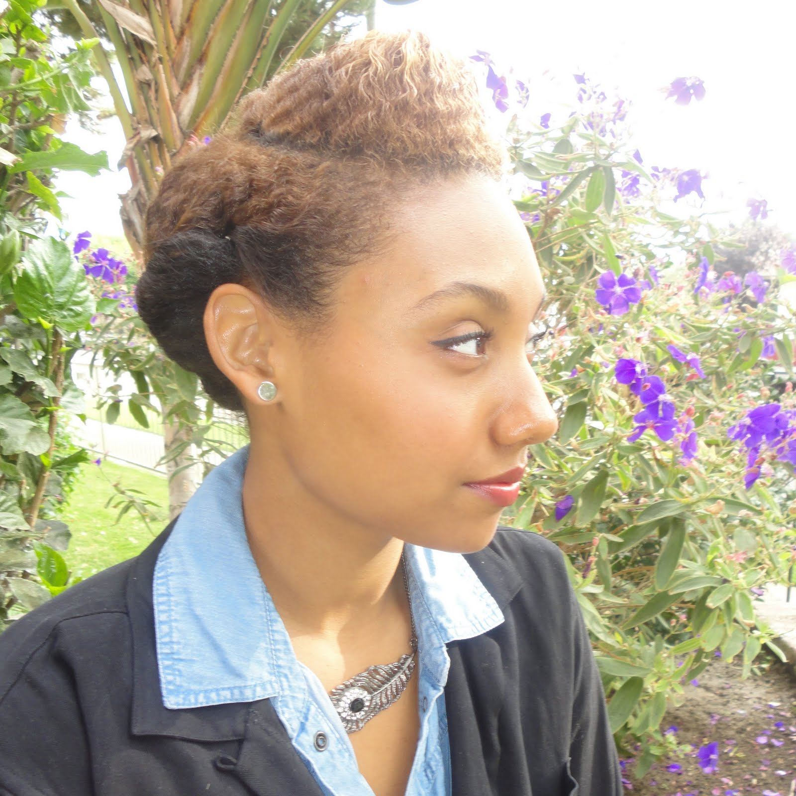 natural hair protective hairstyle
