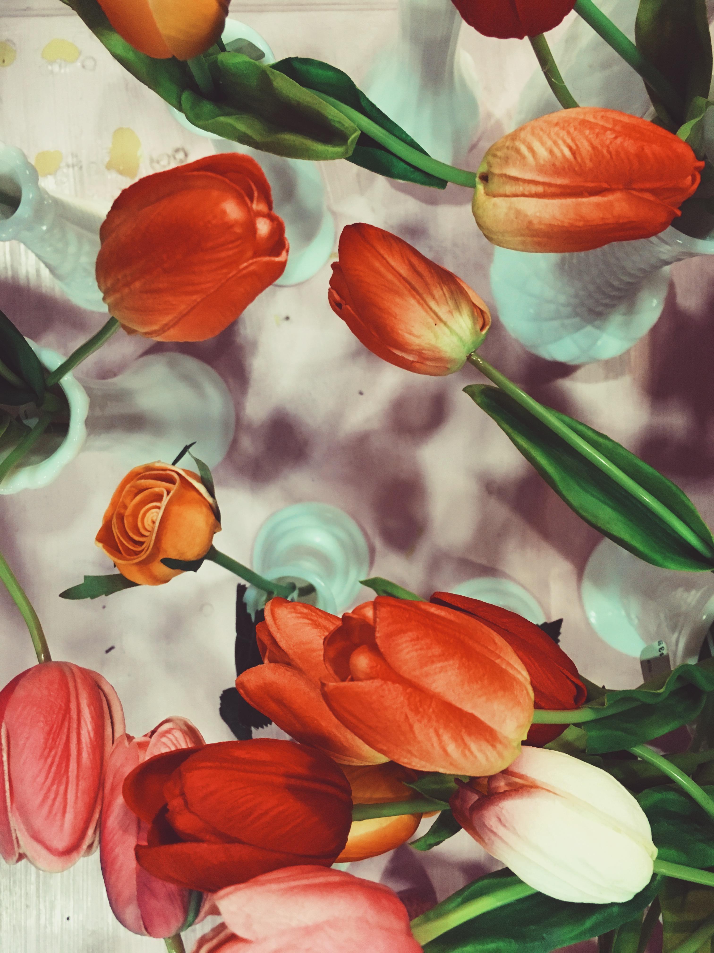 LCM-Photography-flying-miz-daisy-OC-Vintage-Market