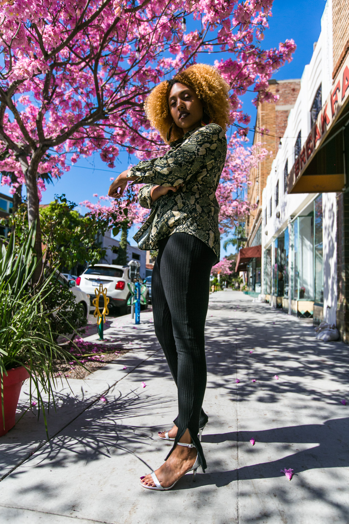 pink flower tree-blogger style-natural hair-rsee-xmmtt-long beach-snake print-the line by k