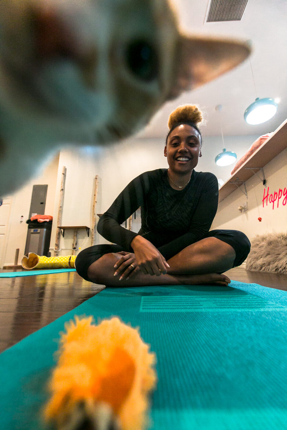long beach-feline good social club-rsee-xmmtt-cats and mats yoga