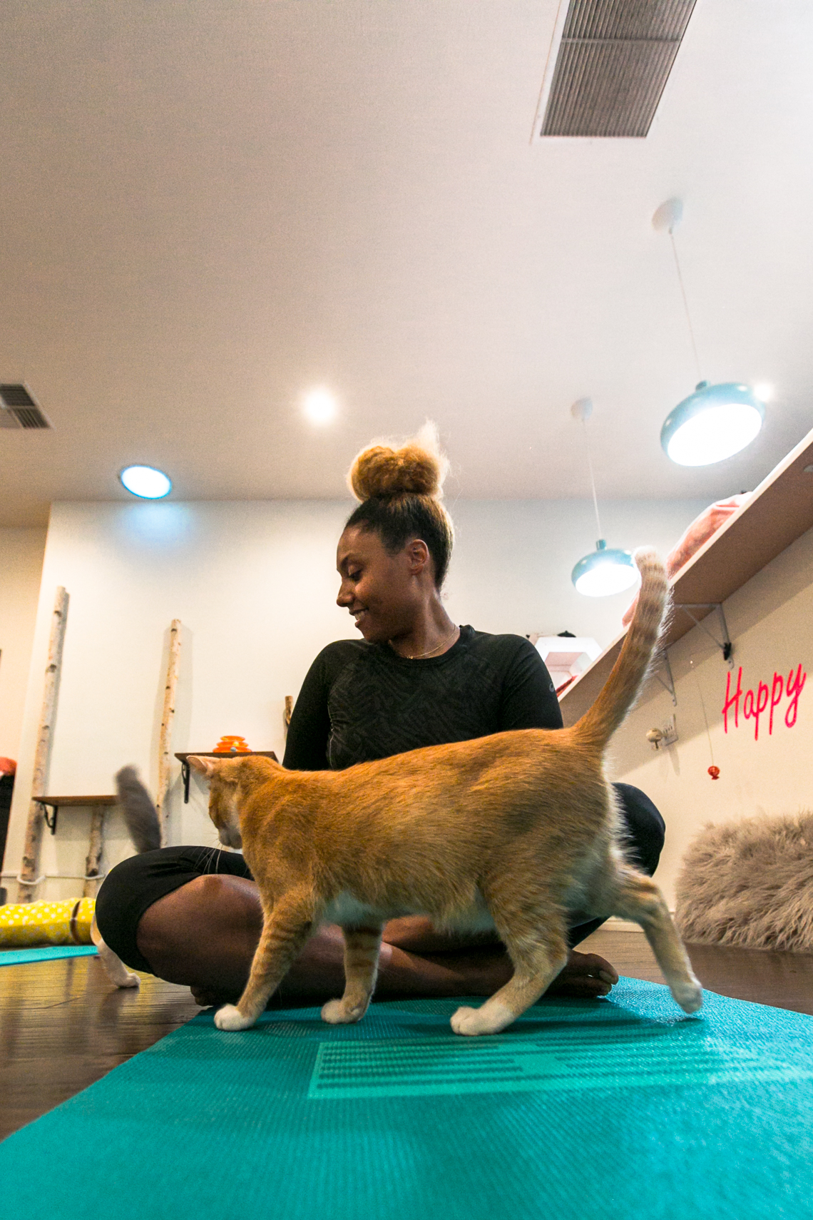 feline good social club-cat-yoga mat-rsee-xmmtt-lcm
