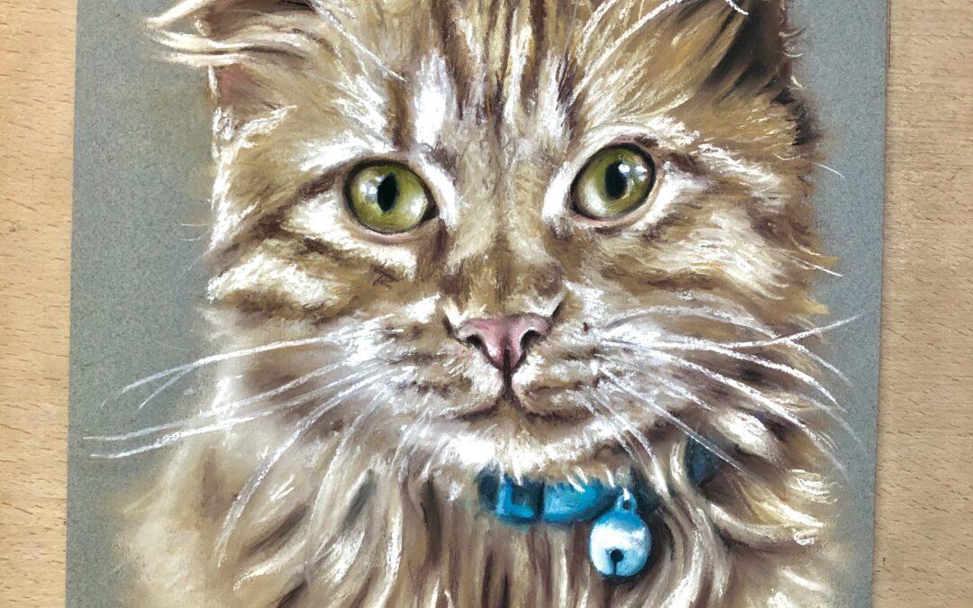 Cat Pet Portrait Artist