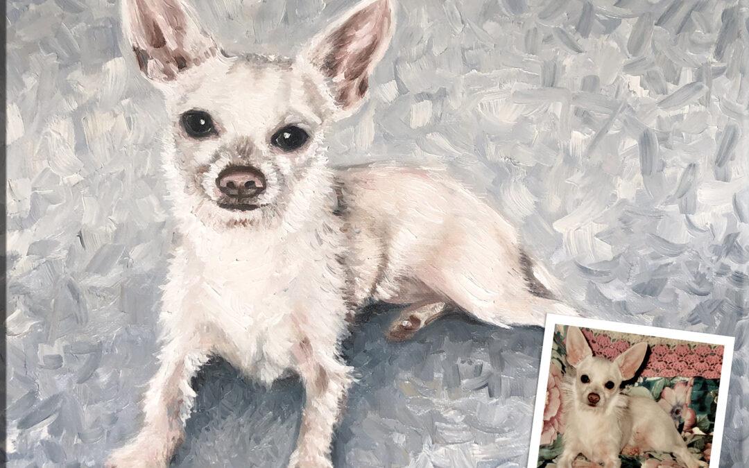 Oil Dog Portrait White Chihuahua