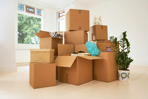 small-moves-help We Help With Small Moves Orlando | Central Florida