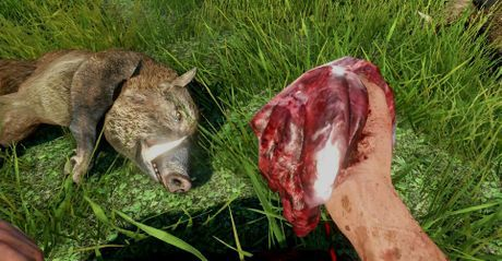 Far Cry 3 skinning