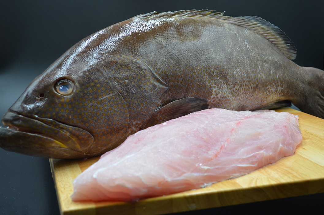 Bar Harbor Seafood fresh grouper whole and one fillet