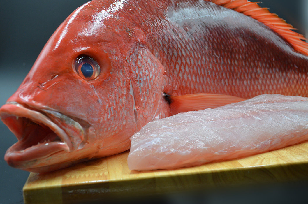 Bar Harbor Seafood fresh snapper whole and fillet