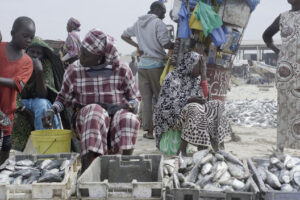 Fishing sector suffers huge losses due to Covid-19 pandemic