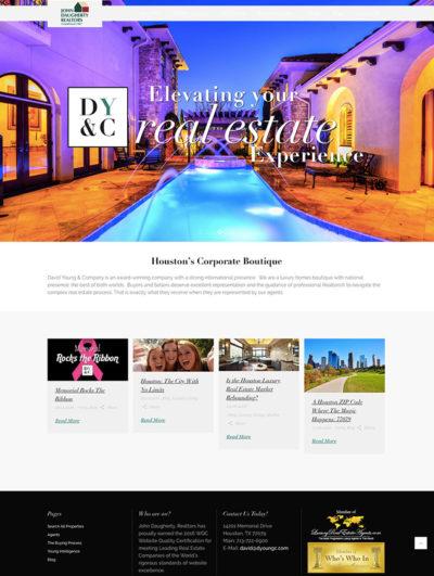 David Young Website